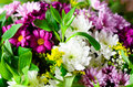 Bouquet Royalty Free Stock Photography - 64219117