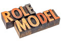 Role Model Typography Royalty Free Stock Image - 64259246