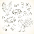 Freehand Drawing Chicken Items Royalty Free Stock Photography - 64327967