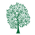Vector Illustration Of Tree On White Background - Royalty Free Stock Photo - 64346335