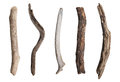 Set Of Dry Tree Branch Royalty Free Stock Photography - 64388907