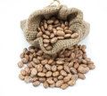 Pinto Beans In Canvas Sack Royalty Free Stock Image - 64467226