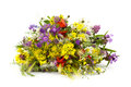 Bouquet Of Wild Flowers Stock Photography - 64485022