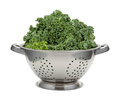 Fresh Kale In A Stainless Steel Colander Royalty Free Stock Image - 64499746