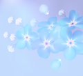Branch Of Blue Forget-me-not Flowers  - Vector Illustration Royalty Free Stock Photos - 64527578