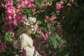 Roses And Gods Statue In The Rose Garden Beutig In Baden-Baden Royalty Free Stock Photography - 64581847