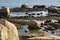 Boulders On The Beach With Tide Pools In Connecticut. Royalty Free Stock Image - 64593666