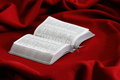 Book On A Red Velvet. Bible. Royalty Free Stock Images - 64595039
