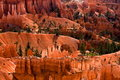 Bryce Canyon Stock Images - 6464424