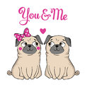 Greeting Card With Funny Pug Stock Photo - 64660900