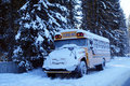 School Bus Royalty Free Stock Image - 64685166