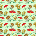 Seamless Vector Pattern With Vegetables, Background With Closeup Mushrooms And Grass: Fly Agaric, Chanterelle And Porcini Mushroom Stock Photography - 64701332