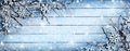 Winter Background - Snowy Branches Royalty Free Stock Image - 64830996