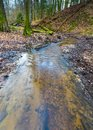 Early Spring Forest With Small Stream Landscape Royalty Free Stock Image - 64891776