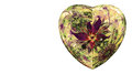Modern High Resolution Heart Flower Background In Vibrant Colors Royalty Free Stock Photo - 64900345