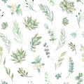 Floral Seamless Pattern. Succulents, Ferns, Thorns Royalty Free Stock Photography - 64905237