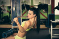 Beautiful Fit Woman Working Out In Gym - Girl In Fitness Stock Photos - 65001493