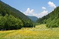 Green Meadow In Mountain Valley Royalty Free Stock Images - 65046979
