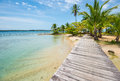 Caribbean Beach With Palm Trees On Bocas Del Toro Islands In Panama Stock Photos - 65060493