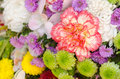 Flower On Backdrops Wall Stock Photography - 65067222
