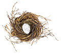 Easter Egg In Birds Nest Royalty Free Stock Images - 65167369