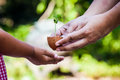 Child With Parents Hand Holding Young Tree In Egg Shell Together Stock Images - 65179564