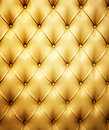 Picture Of Genuine Leather Royalty Free Stock Photo - 6525065