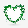 Vector Ivy Branch Heart Illustration Royalty Free Stock Image - 65329526