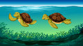 Two Turtles Swimming Under The Sea Royalty Free Stock Photo - 65364725