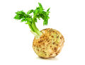 Raw Celery Root Royalty Free Stock Image - 65370116