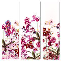 Floral Templates Or Invitation With Orchid Flowers Stock Photos - 65488963