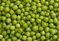 Green Peas Royalty Free Stock Images - 6551759