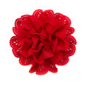 Red Flower Fabric Stock Photos - 65584773
