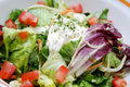 Mixed Salad Stock Photos - 6562443