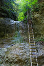 Cliff With Ladder In Slovak Paradise Royalty Free Stock Photography - 65648197