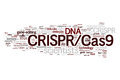 CRISPR/Cas9 System For Editing, Regulating And Targeting Genomes (biotechnology And Genetic Engineering) Word Cloud Stock Images - 65667564
