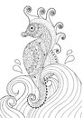 Hand Drawn Artistic Sea Horse In Waves For Adult Coloring Page  Royalty Free Stock Photos - 65683548