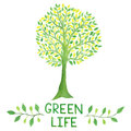 Watercolor Green Logo With Green Tree. Green Life. Stock Photo - 65688240