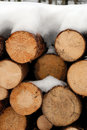Chopped Logs In Winter Snow Royalty Free Stock Photos - 6576648