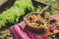 Fresh Farm Home Growth Reddish And Green Salad In Wooden Plate,  Royalty Free Stock Images - 65753459