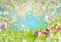 Easter Background With Eggs, Fluffy Rabbit On Grass, Flowers And  Spring Blossom Nature Stock Photography - 65855022