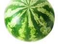 Watermelon Royalty Free Stock Photography - 6590837