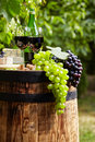 Bottle Of Red Wine With Wineglass And Grapes In Vineyard Stock Photography - 65900852