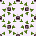 Seamless Pattern With Blackberry Motive Stock Images - 66009514