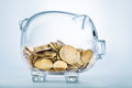 A See Through Piggy Bank Stock Images - 66014314