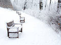 Snow-covered Path In Park With Benches And Bushes Stock Image - 66045421
