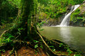 Beautiful Waterfall Hidden In A Tropical Rain Forest Of Thailand Stock Photo - 66057710