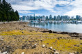 Low Tide At Stanley Park, Vancouver, BC. Royalty Free Stock Photos - 66107848