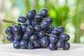 Black Grapes On Wooden Royalty Free Stock Photos - 66222428