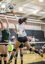 Battle At The Net Stock Images - 66223584